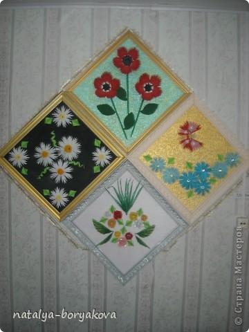 Любимые ромашки. Истинно русский цветок фото 5