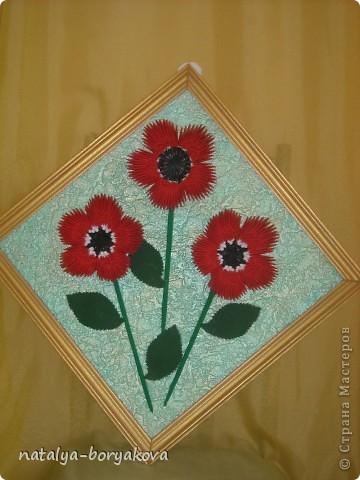 Любимые ромашки. Истинно русский цветок фото 2