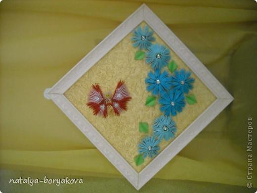 Любимые ромашки. Истинно русский цветок фото 3