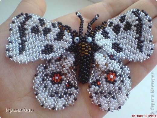 Увидела в просторах интернета бабочек из бисера - и сразу поняла: ХОЧУ. Так родилась такая бабочка. Первая! Надеюсь, не последняя:) фото 2