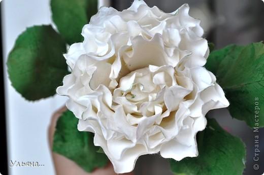 Белая роза из CLAY CRAFT BY DECO фото 2