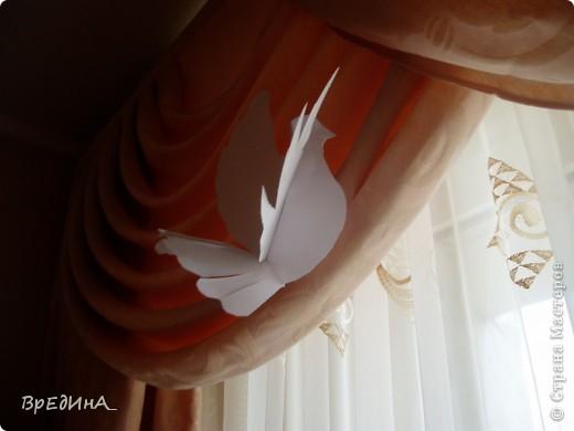 Мой первый голубка (в преддверии годовщины свадьбы) залетел к нам в окно и приземлился на штору, и песню запел, столь нежну и тонку, что душа взлетела с ним ввысь, увидела страны, моря океаны...    Что-то меня прям-таки на лирику прорвало) фото 2