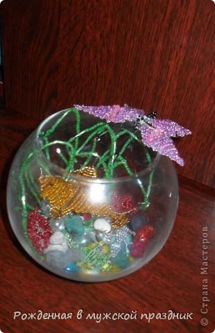 Это мой маленький аквариум. Здесь живет золотая рыбка, которая исполняет желания))))  фото 1