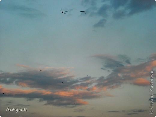 Новое Небо или Маленькие ласточки вместе со взрослыми! фото 11