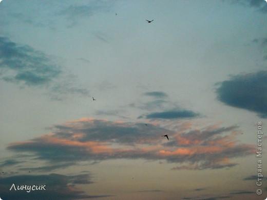 Новое Небо или Маленькие ласточки вместе со взрослыми! фото 16