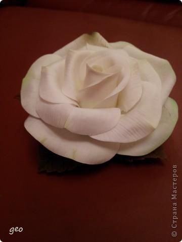 Шикарная роза (Кривулина) фото 6