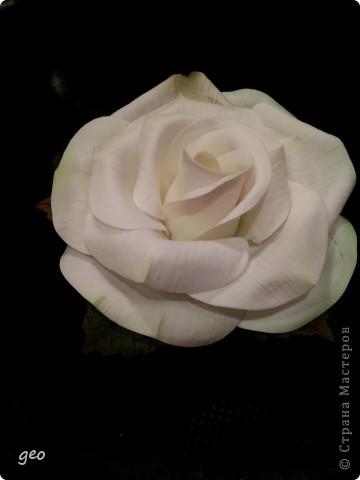 Шикарная роза (Кривулина) фото 4