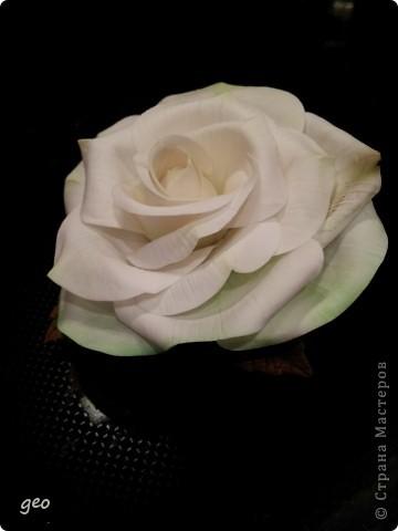 Шикарная роза (Кривулина) фото 5