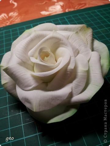 Шикарная роза (Кривулина) фото 2