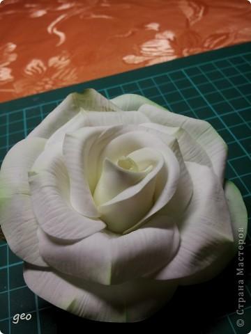 Шикарная роза (Кривулина) фото 8