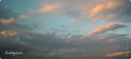 Новое Небо или Маленькие ласточки вместе со взрослыми! фото 2