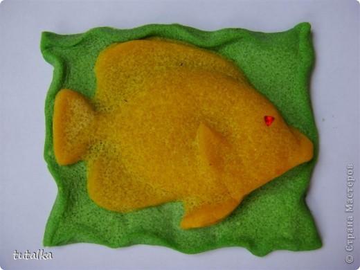 Цветные соленушки) фото 10