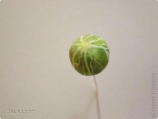 Мастер-класс Лепка Выращиваем соленые ягодки МК Тесто соленое фото 34