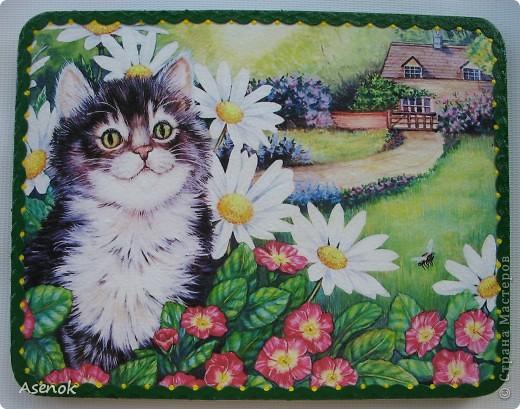 КОТЭ... ИЛИ любите ли вы кошек так как их люблю я???