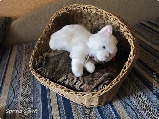 Здравствуйте, мои дорогие жители Страны!!! Вот наконец домучила кошкин дом, но моделью у меня работала моя крольчиха Люська! Делала для  кошки приятельницы, для их новоселья, хоть бы по размеру подошел...  фото 5
