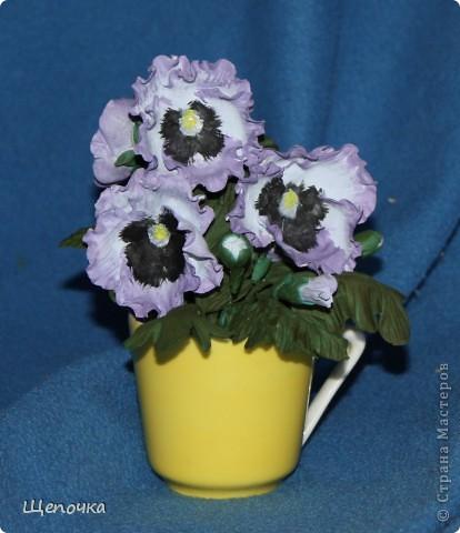 """тиных глазок"""". Очень люблю эти цветочки. Подарок на 8 марта коллеге. фото 1"""