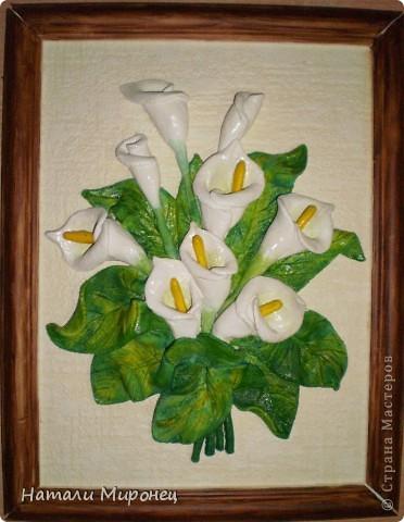 Это мои каллы в цвете. Спасибо ещё раз Маше за идею фото 1