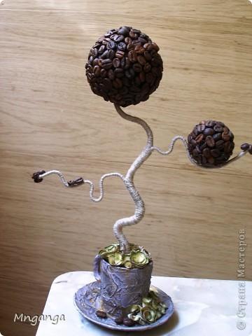 """Хочу показать свои ароматные деревца. Был набор из 6 чашек кофейных советских еще, как обычно жалко выкинуть.... Вот и получилась целая роща, вот два, что остались .Жаль, не успела сфоткать все, наглые гости разобрали :))) Но наверное это лучшая похвала, когда твои работы """"улетают"""" :) фото 2"""