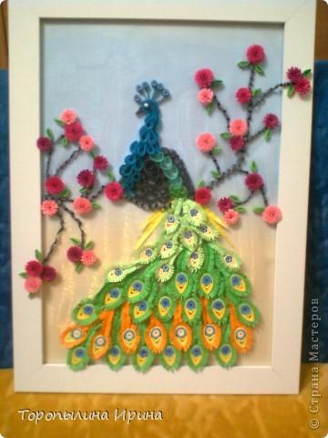 моя жар-птица повторюшка фото 2