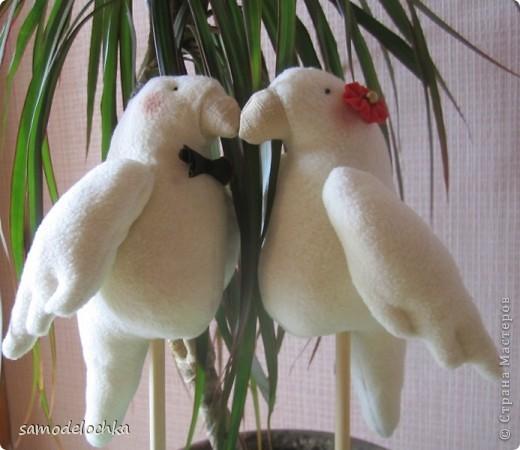 Джек и Джилл. Птичье танго