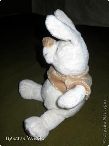 Всем здравствуйте)Сейчас покажу вам моего зайца который сшился недавно)) Вот и он : фото 3