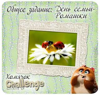 Поменяла фото - у моей дочери фотографировать намного лучше получается, да и ее фотоаппарат не сравнить с моим. Всех желающих приглашаю посетить мой мастер класс по изготовлению ромашек в мой блог http://paper-beauty.ru/master_klassi/yuvelirnye-romashki/  фото 5