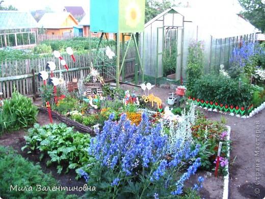 У меня в саду фото 2