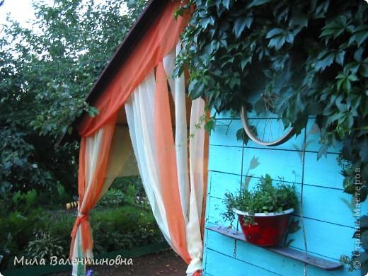 У меня в саду фото 5