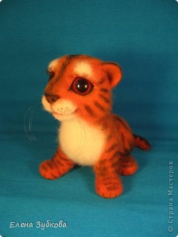 Этот тигрёнок пока без имени, пусть имя ему придумает новая мамочка - девочка Настя))) фото 9