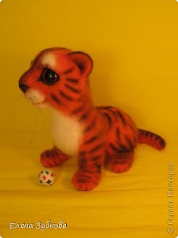 Этот тигрёнок пока без имени, пусть имя ему придумает новая мамочка - девочка Настя))) фото 7