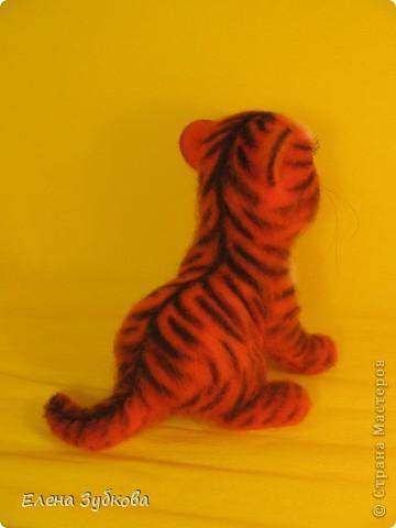 Этот тигрёнок пока без имени, пусть имя ему придумает новая мамочка - девочка Настя))) фото 5