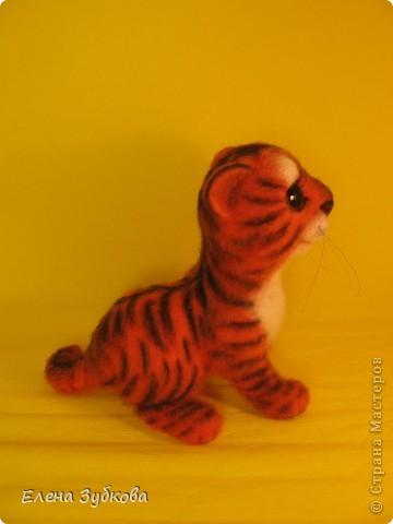 Этот тигрёнок пока без имени, пусть имя ему придумает новая мамочка - девочка Настя))) фото 4
