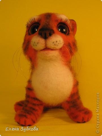 Этот тигрёнок пока без имени, пусть имя ему придумает новая мамочка - девочка Настя))) фото 3