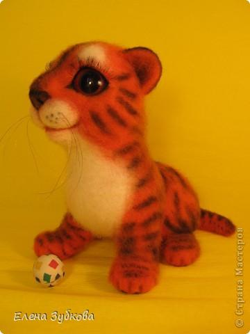 Этот тигрёнок пока без имени, пусть имя ему придумает новая мамочка - девочка Настя))) фото 2