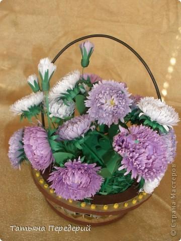 Астра - символ любви и изысканности. Сегодня - День Поцелуев. Я поздравляю всех жителей СМ с этим замечательным праздником и дарю вам эти скромные цветы. Желаю взаимной любви и только сладких поцелуев!!! фото 1