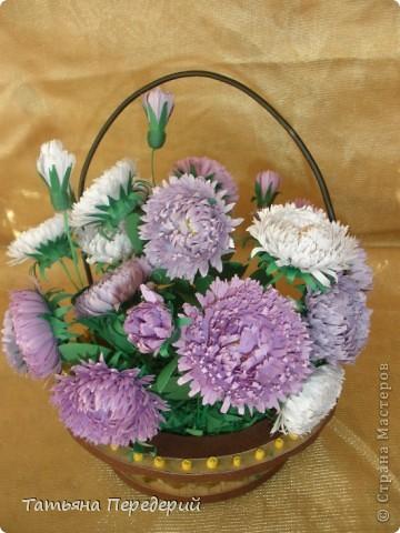 Астра - символ любви и изысканности. Сегодня - День Поцелуев. Я поздравляю всех жителей СМ с этим замечательным праздником и дарю вам эти скромные цветы. Желаю взаимной любви и только сладких поцелуев!!! фото 2