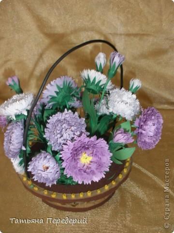 Астра - символ любви и изысканности. Сегодня - День Поцелуев. Я поздравляю всех жителей СМ с этим замечательным праздником и дарю вам эти скромные цветы. Желаю взаимной любви и только сладких поцелуев!!! фото 3