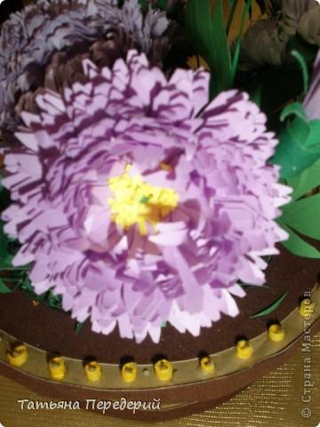 Астра - символ любви и изысканности. Сегодня - День Поцелуев. Я поздравляю всех жителей СМ с этим замечательным праздником и дарю вам эти скромные цветы. Желаю взаимной любви и только сладких поцелуев!!! фото 6