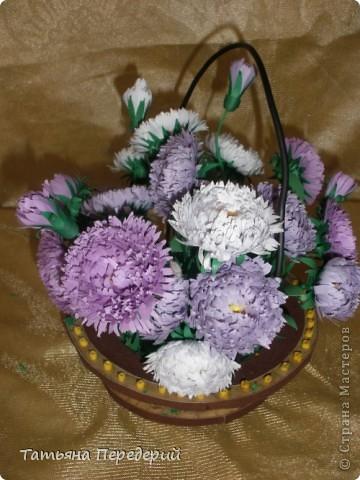 Астра - символ любви и изысканности. Сегодня - День Поцелуев. Я поздравляю всех жителей СМ с этим замечательным праздником и дарю вам эти скромные цветы. Желаю взаимной любви и только сладких поцелуев!!! фото 4