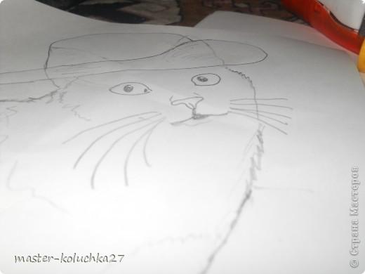 вот такой котик.ссылка на конкурс в конце записи. фото 4