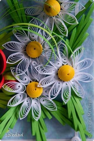Грядущему Дню Семьи посвящается.  Ромашка символ любви и семьи. Василек - святости, уважения, нежности. Пшеница - богатства и жизни. Мак - плодородия.  Подумала я и решила объединить эти прекрасные цветы вот в такую композицию. фото 4