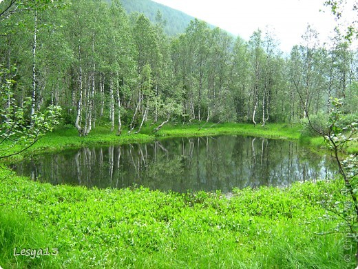 Не могу не поделиться впечатлениями от сегодняшней экскурсии на Ивановские озера в Хакасии! Это что-то потрясающее!   фото 9