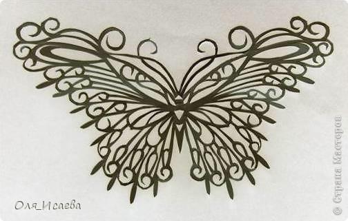 Опять бабочка фото 4