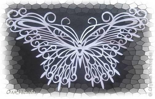 Опять бабочка фото 2
