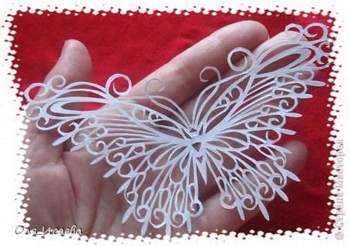 Опять бабочка фото 3