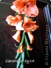 Самый первый цветочек из хф. фото 1