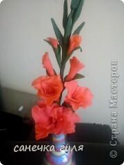 Самый первый цветочек из хф. фото 2