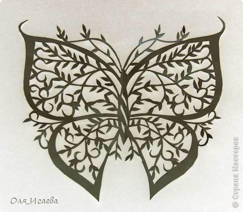И опять бабочка... фото 4
