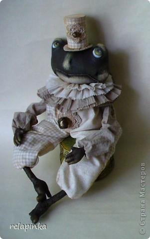 Тоби (робкий жаб) фото 3
