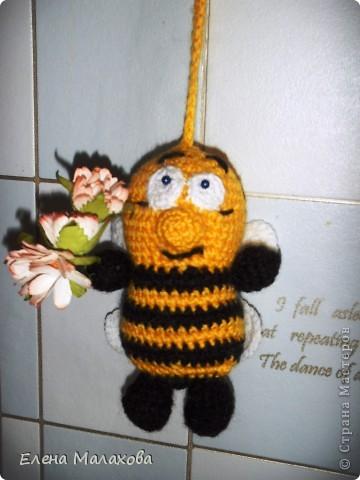 Пчелка фото 3
